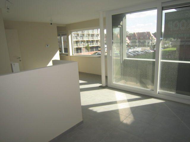 Zongericht appartement met terras Nieuwpoort - 3867