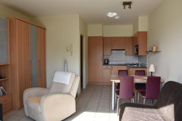 Zeer centraal gelegen appartement te huur met slaaphoek en ruim terras - 9050