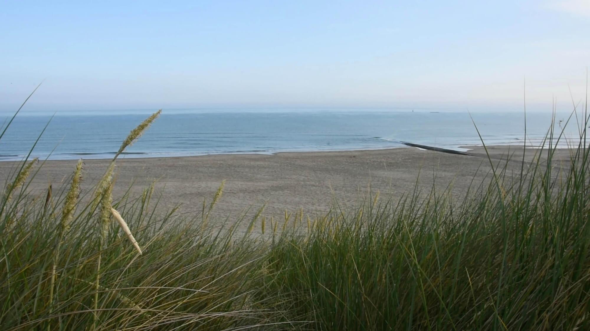 Gerust kopen aan de Belgische kust